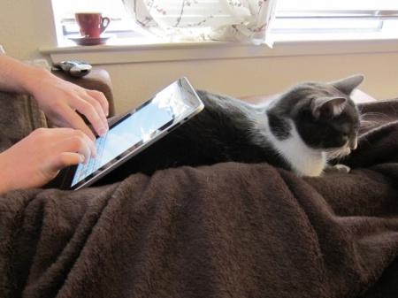 iCat - подставка для iPad